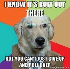 Encouraging Memes - cleanfeetpetcleanup omaha pet waste removal http www