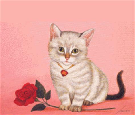 wallpaper bergerak kucing kucing gif gambar animasi animasi bergerak 100 gratis