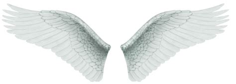 105 angel wings tiny clipart