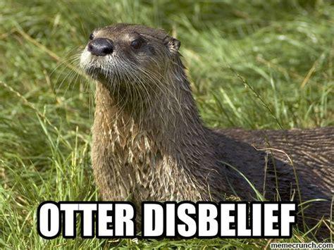 Otter Meme - otter disbelief