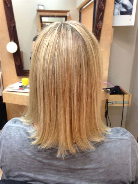 hair brown in back and bottom and blonde in front back view of blonde hair with honey color lowlights by