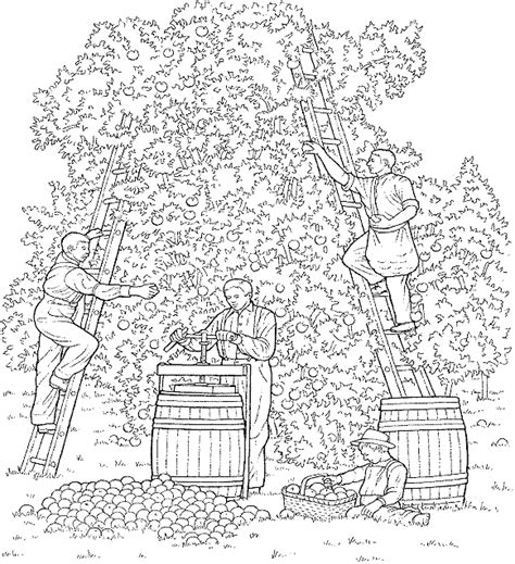 imgs for gt apple orchard coloring pages