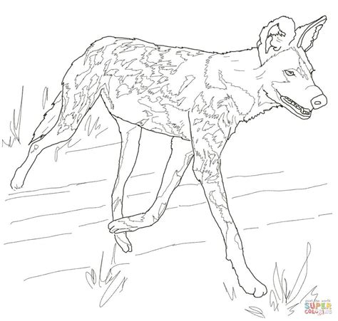 coloring pages of hunting dogs african wild dog or painted hunting dog coloring page