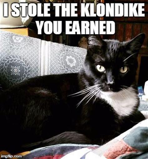 Klondike Bar Meme - image tagged in memes funny cat funny cat funny cat memes