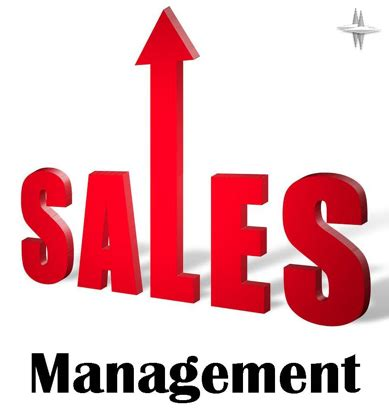 it sales sales management system c project code with c