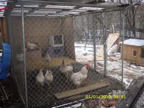 craigslist kennel the chicken coops backyard chickens community