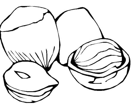 Free Meats Proteins Coloring Pages Nuts Coloring Pages