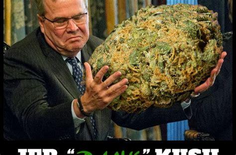 Weed Meme - weed memes weed memes marijuana memes pot memes