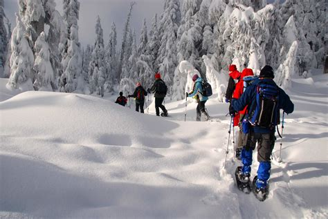 snow shoe 5 reasons you should try snowshoeing alps2alps