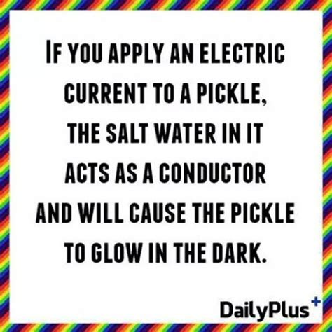 electrical conductors facts the pickle glow and water on