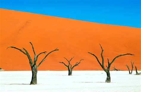 Most Amazing by Dead Valley Deadvlei Namibia Feel The Planet