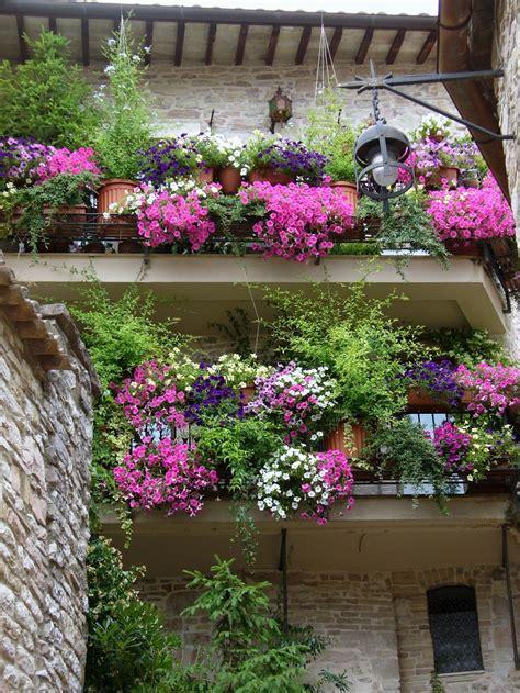 idee balconi fioriti balconi fioriti un esplosione di mille colori e profumi