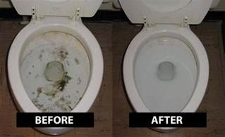 how to clean black water stains in a toilet thumbnail