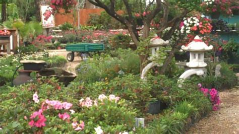 Garden Center League City Lynns Landscaping And Water Garden Center