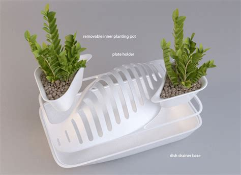 Very Small Kitchen Design Ideas recycled water from draining dishes in dish rack irrigates