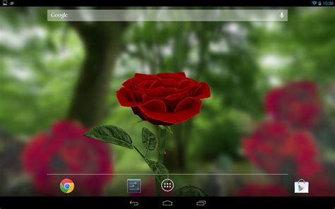 hd rose wallpaper for android phone 3d rose live wallpaper free android apps games on