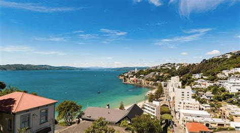 looksee wellington chance of a lifetime you can land a free trip to new