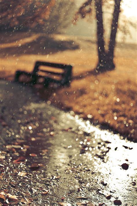 autumn rain pictures   images  facebook
