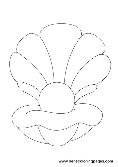 shell coloring pages shell colouring sheet