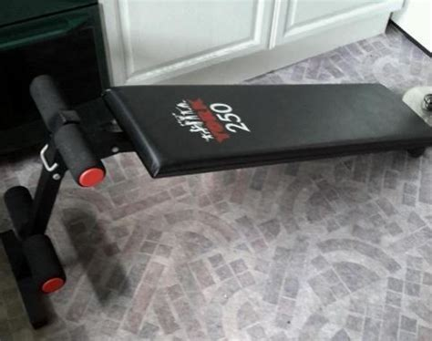 york sit up bench york sit up bench for sale in rathmines dublin from mypetcow