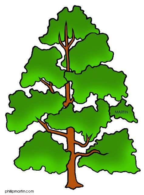pin indiana state tree tulip poplar on pinterest indiana state tree tulip clip art trees for animated