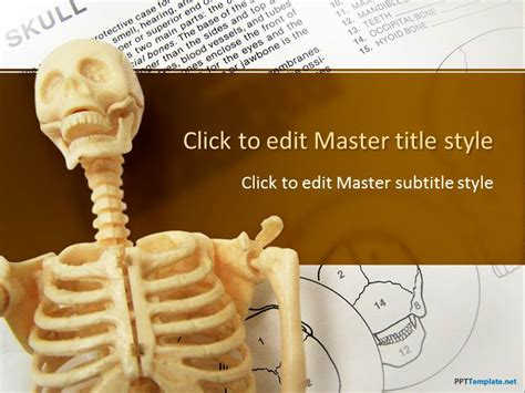 anatomy ppt templates free free anatomy ppt template
