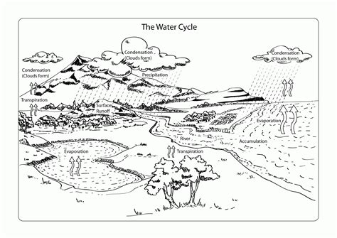 Water Cycle For Kids Coloring Page Coloring Home Water Cycle Coloring Page