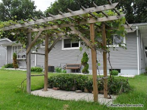 grapevine trellis design why you should build grape arbor decorifusta