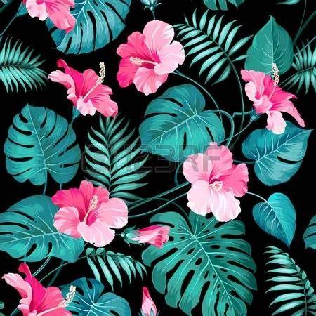 imagenes de rosas oscuras m 225 s de 25 ideas incre 237 bles sobre aves de la selva tropical