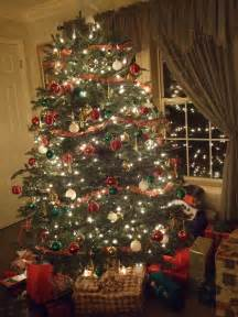 christmas trees san diego home design inspirations