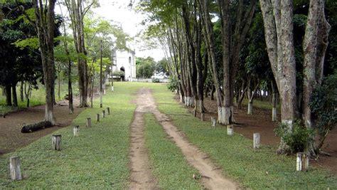 Trajano de Moraes-RJ: Alameda dos Eucaliptos - Sâo