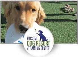 folsom resort outstanding pet care learning center