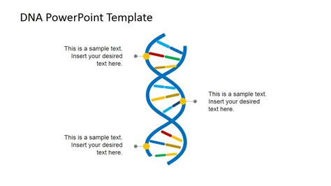 Dna Model Template by Dna Strands Powerpoint Template Slidemodel