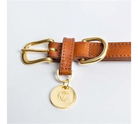 wandlen messing honden halsband hyde park cognac and more
