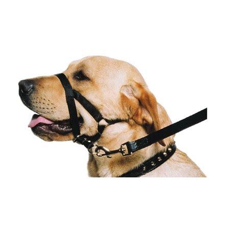 Rabbit Hutches Online Ancol Nylon Training Halter Or Dog Halti Pet Goods Online