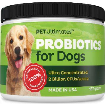 probiotics for puppies with diarrhea pet ultimates probiotics for dogs review