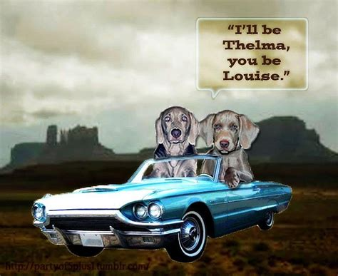 thelma and louise quotes thelma louise thelma louise thelma