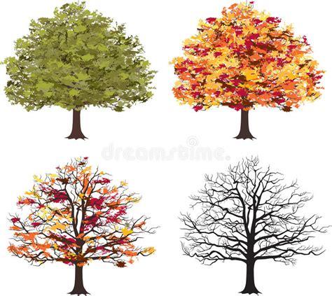 illustration of season trees different seasons of tree vector stock vector illustration of outline family 42905709