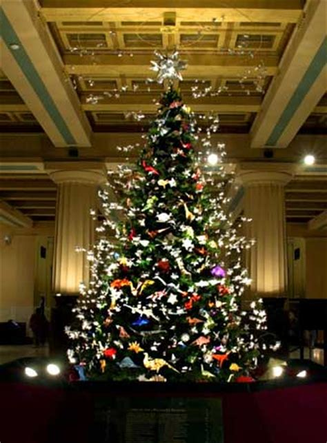 american museum of history tree nyc