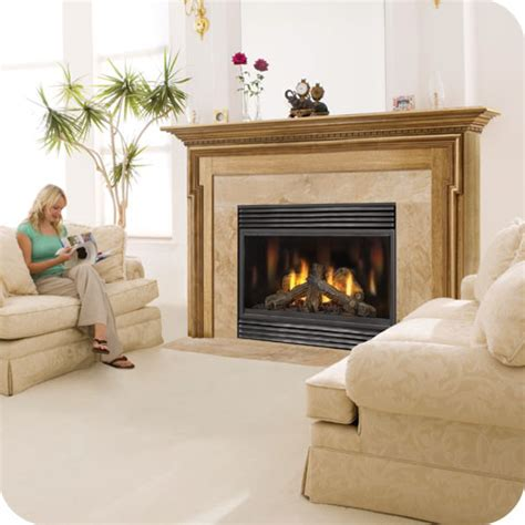 Continental Gas Fireplace by The Hayter Continental Fireplaces