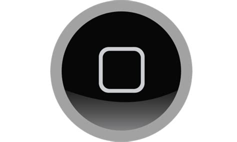 silver ring around iphone 5s home button may be