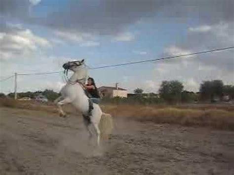 2 masada caballo de mi epica caida a caballo 20 8 08 youtube