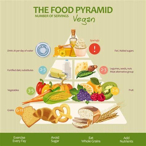 vitaminen en mineralenvoedselillustratie vectorreeks het gezonde de veganist de voedselpiramide infographic