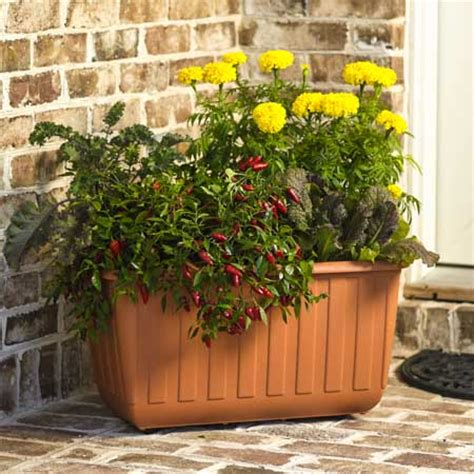 Gardeners Supply Self Watering Best Gifts For Gardeners Serious Gardeners