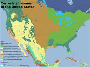 biomes map usa images