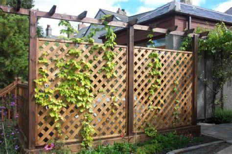 Rankgitter Als Sichtschutz by Stilvolle Rankgitter F 252 R Ihren Hof Und Garten