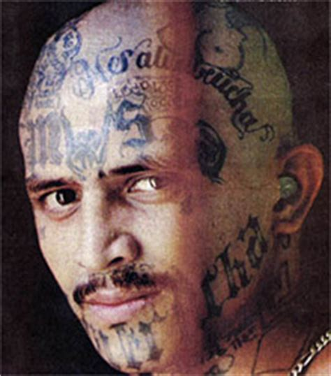 ms 13 gang seeks to unite across us