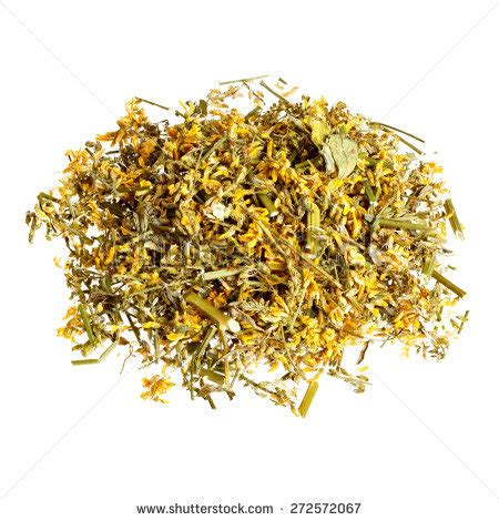 Oregano During A Thc Detox by Herbal Feel Evening Tea Ingredients Stock Photo