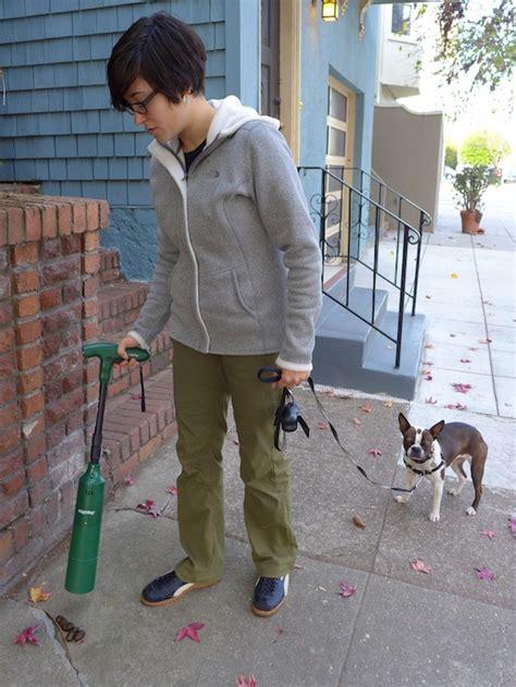 my backyard smells like dog poop 13 ways to pick up dog poop