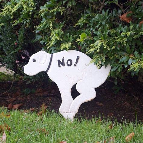 dog poop backyard 37 best images about dog poop signs for tristan on